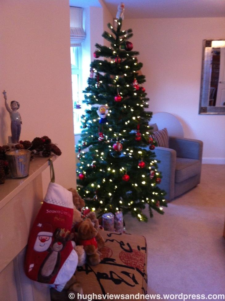 Hugh's Christmas Tree