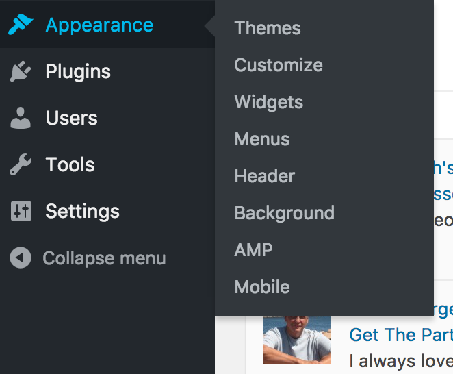 Appearances bar in WordPress dashboard