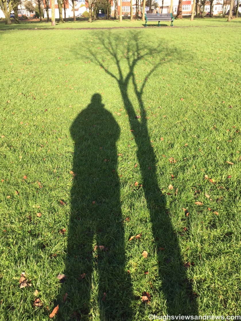 Shadow of Hugh and a tree