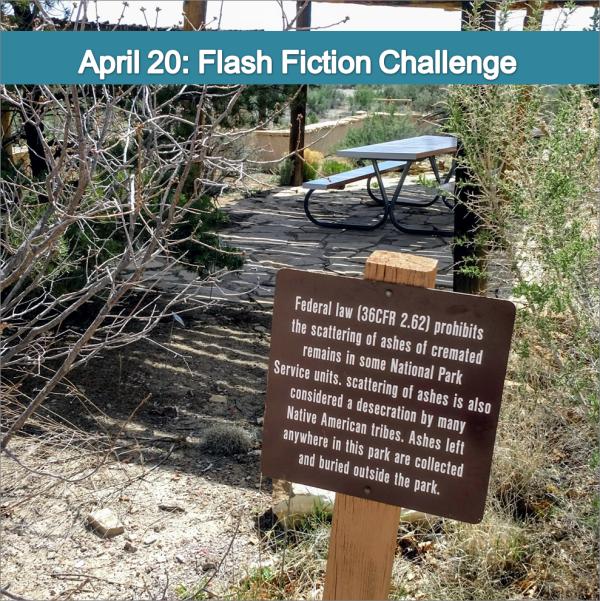 Charli Mills 99 word #flashfiction challenge - Navel