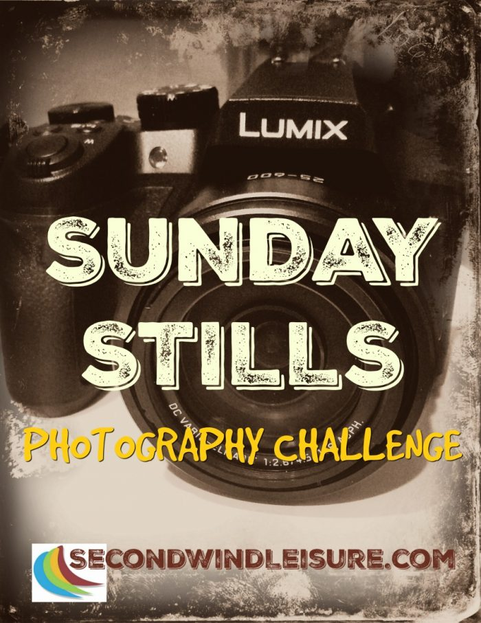 #SundayStills #photography #blogging #challenge