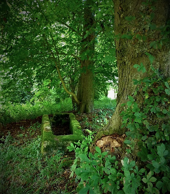 #writephoto #flashfiction #shortstory #fiction
