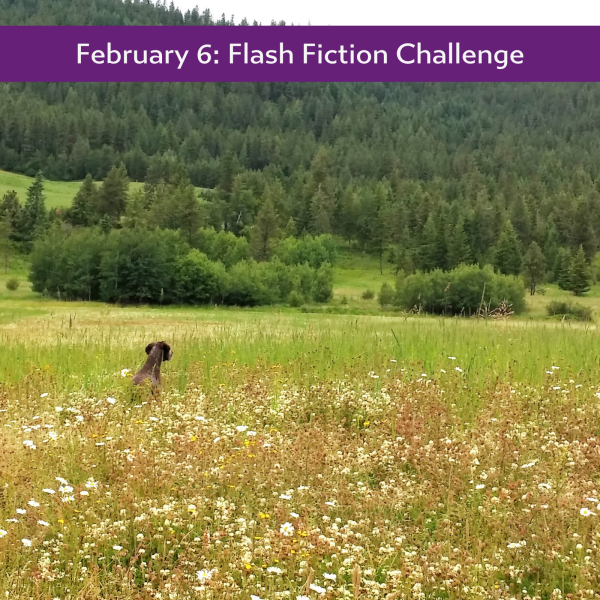 The Picture #flashfiction