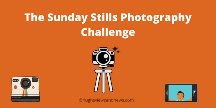 Banner for the Sunday Stills photography challenge