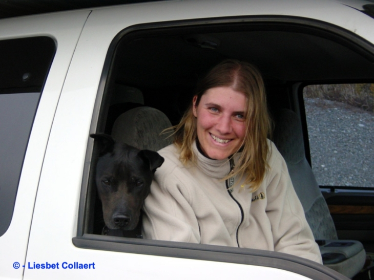 Photo of Liesbet Collaert and Caesar the dog looking out of a window of a van