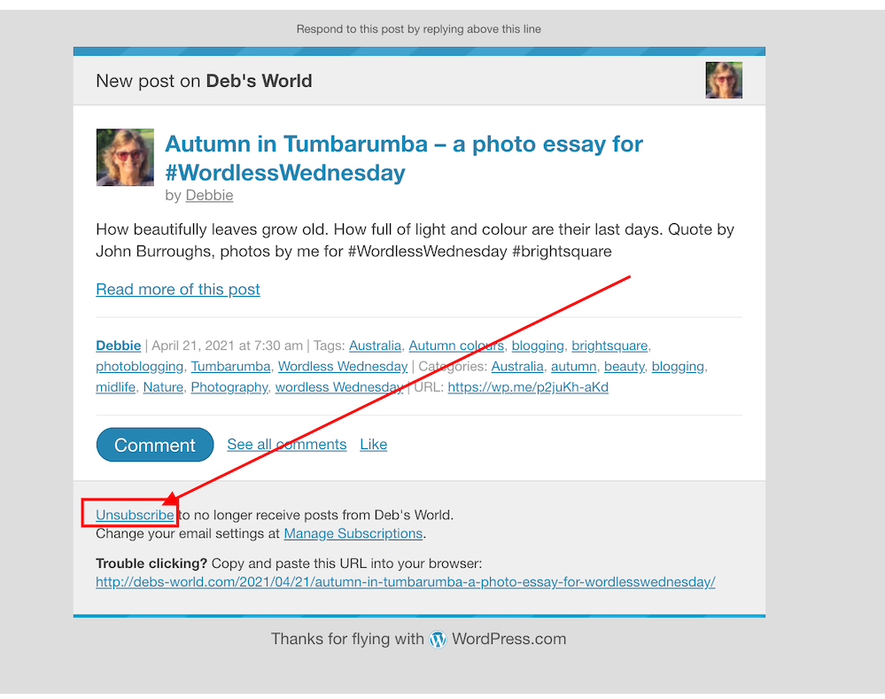 Screenshot highlighting where to find the unsubscribe button on a WordPress email notification