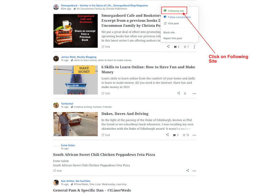 Screenshot highlighting where to find the Following Site button on a followed blog on WordPress