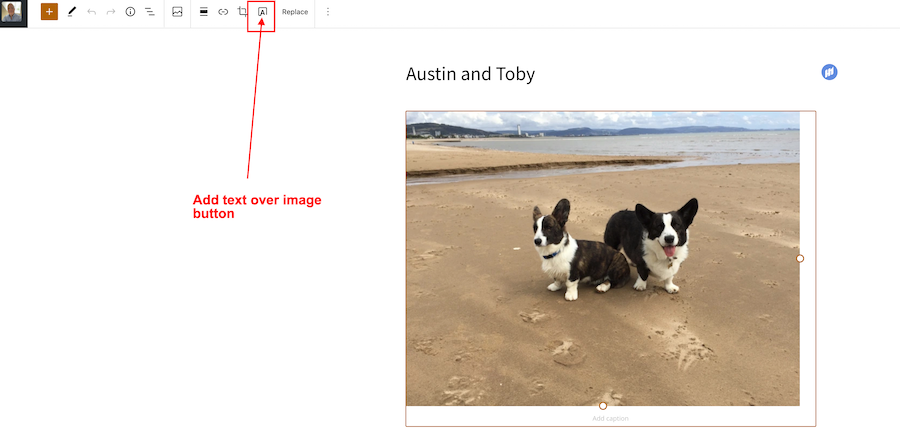 Screenshot showing the location of the 'Add Text Over Image' button on the Block editor