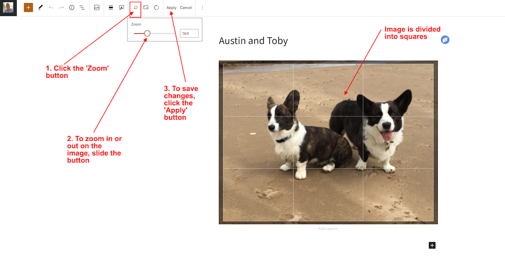 Screenshot showing the 'Zoom' photo editing functions on the WordPress Block editor