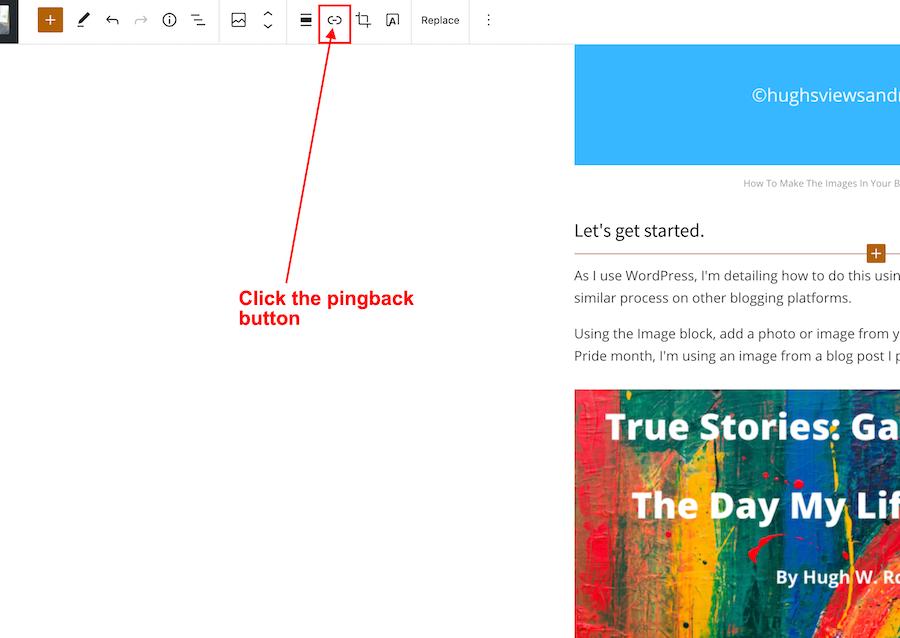 Screenshot highlighting the 'PingBack' button.