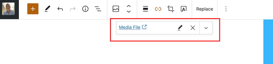 Screenshot showing the Media File window that opens when clicking the pingback button