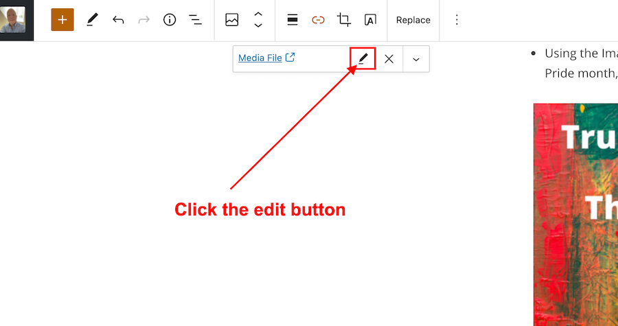 Screenshot highlighting the edit button on the Media File window when creating a pingback