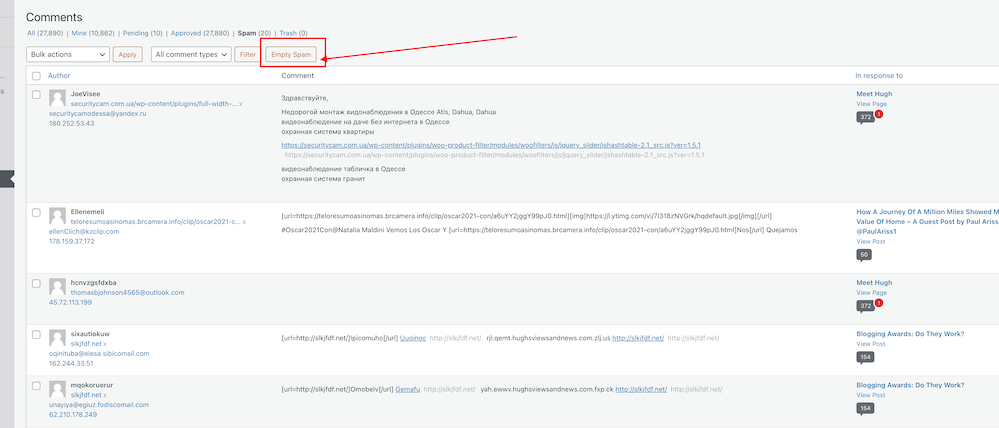 Screenshot highlighting the WordPress Empty Spam Button